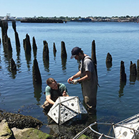 Photo of students working on project in ocean.